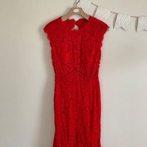 Betsy and Adam red lace fitted dress